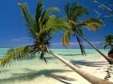 Туры в Доминиканскую республику
